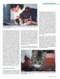 Wenn die Nieren streiken von Dr. med. vet. Claudia Möller ... - caet.ch - Seite 4