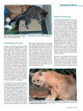 Wenn die Nieren streiken von Dr. med. vet. Claudia Möller ... - caet.ch - Seite 6