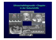 Ultraschalldiagnostik + Doppler in der Geburtshilfe ...
