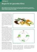 Glasfaser mit Wireless-Technologie clever kombiniert - Seite 6