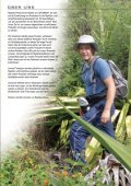 Reptiles-Planet-Katalog - Reptile-food.ch - Seite 3
