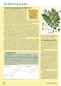 T˜˚r˛˝i - phytotherapie.co.at - Page 6