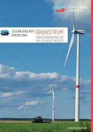 Grünstrom Direktvermarktung - TeraJoule Energy