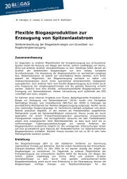 Flexible Biogasproduktion zur Erzeugung von Spitzenlaststrom