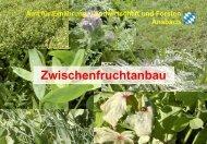 Aussaatstärke: ca. 25 kg/ha, Saat bis Ende August - Amt für ...