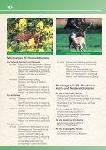 Wildackersaatgut, Wildwiesen, Saatgut für spezielle ... - Rasenshop - Seite 7