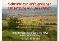 Rolf Derpsch, Schritte zur erfolgreichen Umsetzung von Direktsaat