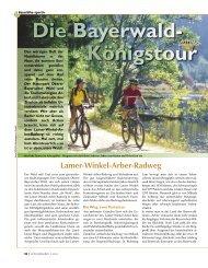 Lamer-Winkel-Arber-Radweg - Bayernbike.de