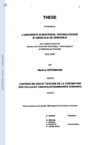 [tel-00323704, v1] Contenu en ADN et texture de la chromatine des ...