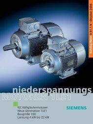 Niederspannungs- motoren