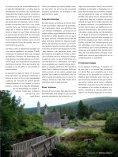 AVES ACUÁTICAS DE INVERNADA - Bizkaia 21 - Page 5