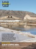 AVES ACUÁTICAS DE INVERNADA - Bizkaia 21 - Page 7