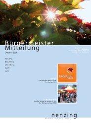 Bürgermeistermitteilung 08/03 - Marktgemeinde Nenzing