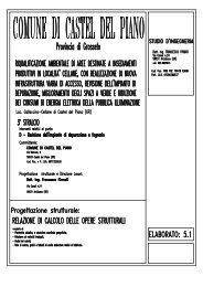 Relazione strutturale - Comune di Massarosa