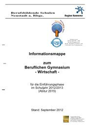 Informationsmappe zum Beruflichen Gymnasium - Wirtschaft -