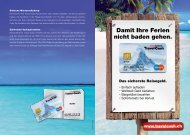 Travel Cash Flyer (PDF)
