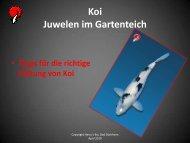 Tipps zur Koi-Haltung (Format: PDF; Dateigröße 1 - Harry´s Koi