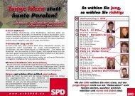 Junge Ideen statt bunte Parolen! - stefan-prams.de