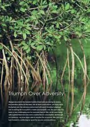 Triumph Over Adversity - Announcements - Bursa Malaysia