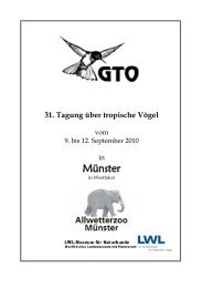 Münster - DO-G