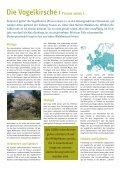 Die Vogelkirsche - Schutzgemeinschaft Deutscher Wald - Seite 2