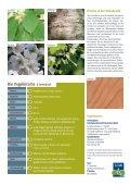 Die Vogelkirsche - Schutzgemeinschaft Deutscher Wald - Seite 4