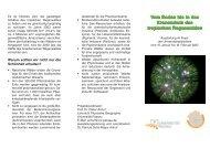 flyer als PDF - Universität Passau