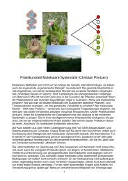 Praktikumsteil Molekulare Systematik (Christian Printzen)
