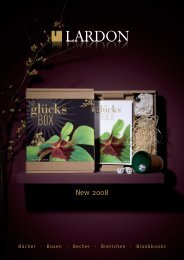 New 2008 - Lardon Media AG