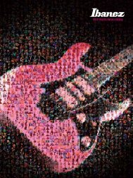2012 Electric Guitars Catalog - Ibanez