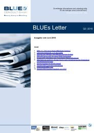 BLUEs Letter Q2 2010 - BLUE CONSULT GmbH