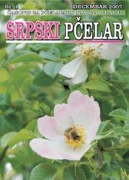 srpski pcelar inter - Beekeeping Dragoslav