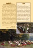 nagyobb modellje, amely egyúttal az Észak-Ameri - Magasles - Page 5