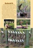 nagyobb modellje, amely egyúttal az Észak-Ameri - Magasles - Page 7