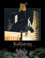 09Kullatorp Arabian Stud