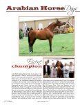 Arabian Horse - Tutto Arabi Magazine - home - Page 3
