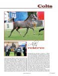 Arabian Horse - Tutto Arabi Magazine - home - Page 6