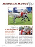 Arabian Horse - Tutto Arabi Magazine - home - Page 7