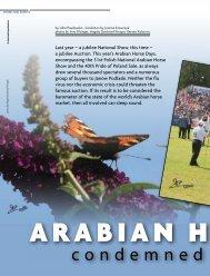 ArAbiAn Horse DAy - Tutto Arabi Magazine - home