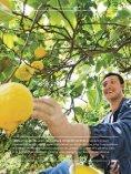 Rapport de développement durable 2010 - Weleda - Page 7