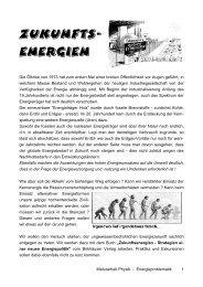erneuerbare Energien - Gymnasium Neufeld