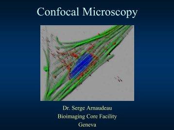 Confocal Microscopy Principles
