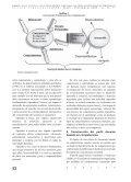 De un perfi l docente tradicional a un perfi l docente basado en competencias - Page 5
