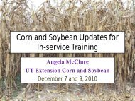 Corn and Soybean Update (Angela McClure) - UTcrops.com