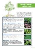 Baumpaten gesucht - Bund Naturschutz Nürnberg - Seite 5