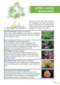 Baumpaten gesucht - Bund Naturschutz Nürnberg - Seite 7