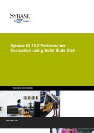 Sybase IQ 15.2 Performance Evaluation using Solid State Disk