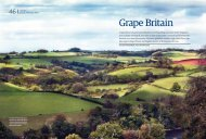 Grape Britain - Yearlstone Vineyard