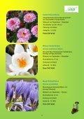 Katalog 2013 - VIVA - Seite 6