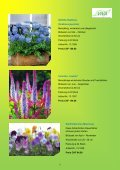 Katalog 2013 - VIVA - Seite 7